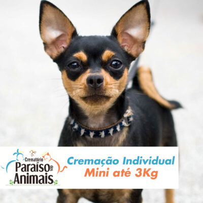 cremacao-individual-mini-ate-3kg