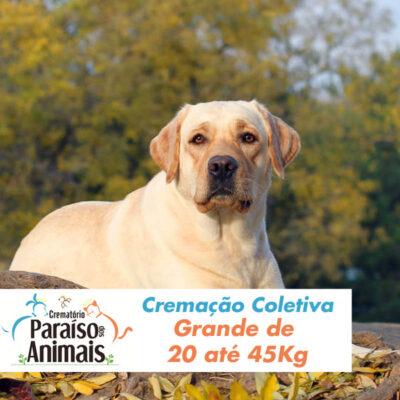 cremacao-coletiva-grande-de-20-ate-45kg