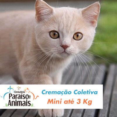 cremacao-coletiva-mini-ate-3kg