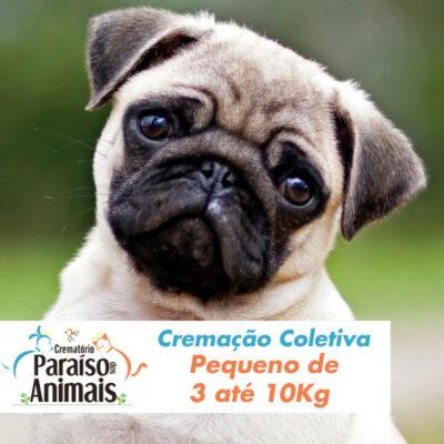 cremacao-coletiva-pequeno-de-3-ate-10kg