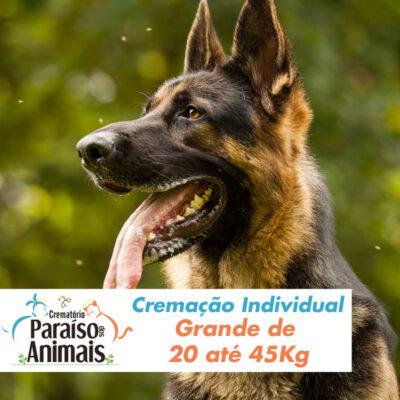 cremacao-individual-grande-de-20-ate-45kg