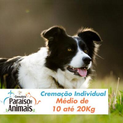 cremacao-individual-medio-de-10-ate-20kg