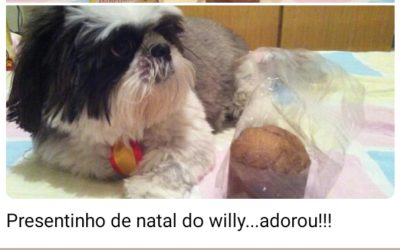 Willy